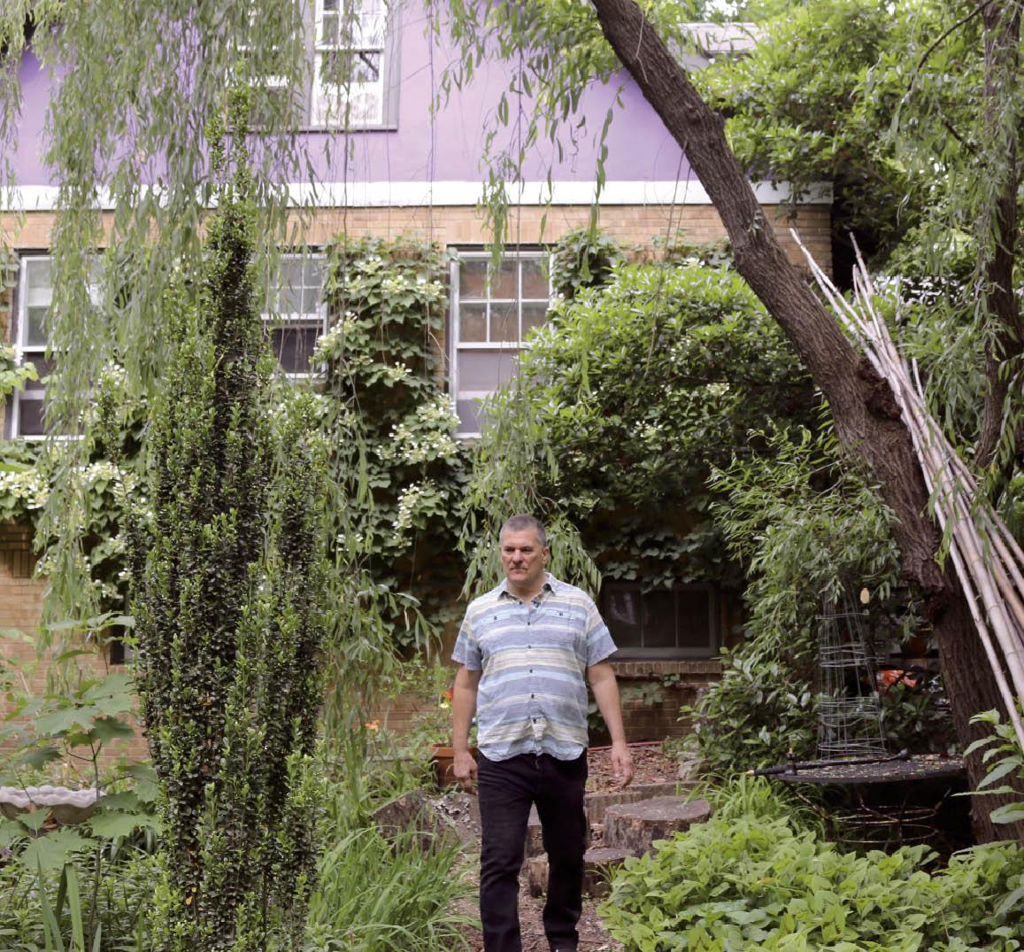 Jardin À L Américaine des américains transforment leur jardin en mini-jungle | le